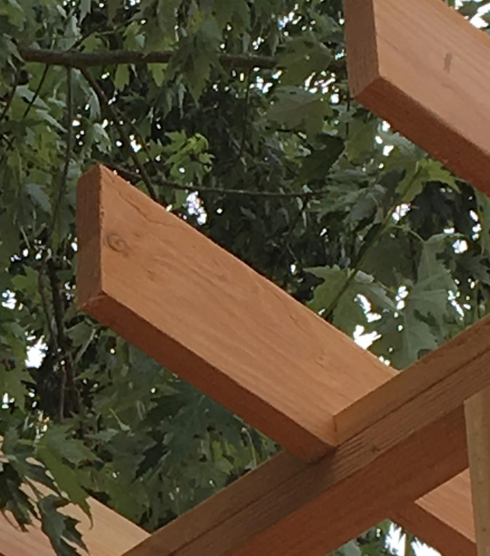 Birdsmouth cut in rafter